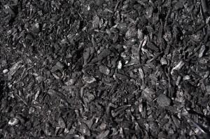 Biochar dry
